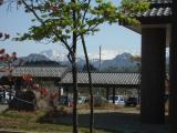 Cimg3350