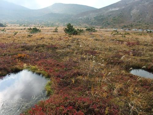 紅葉の浄土平湿原にて